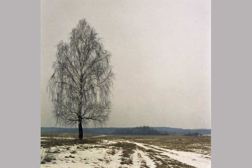 008_Early_Spring_Sergeevichi